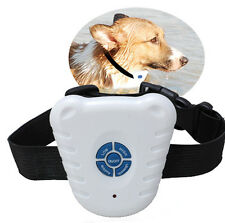Small Pet Dog Ultrasonic Anti Barking Training Shock Control Collar New Hot