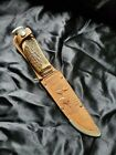 SOLINGEN GERMANY HUNTING KNIFE 461 STAG HANDLE EDGE BRAND WITH LEATHER SHEATH