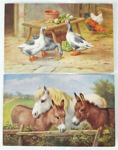 2 x Vintage Salmon Watercolour Postcards Farm Animals Geese Hens Donkeys Horse