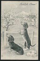 1908  PC  Dog 2  Dachshund Dackel Teckel Easter Eggs Chicks