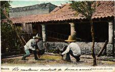 MEXICO, CALISTANDO LOS GALLOS PARA LA PELEA, Vintage Postcard