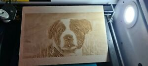 Your Photo Picture HD Laser Engraved onto A4 3mm Birch Wood