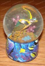 La Mer De Cristal Numero Un (Lassen by Westland, 23227) Sea Turtle Musical Wg