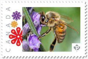BEE = HONEYBEE on LAVENDER flowers = postage stamp MNH Canada 2018 [p18-09-04]