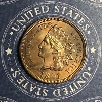 1891 INDIAN HEAD COPPER CENT COLLECTOR COIN FOR YOUR COLLECTION.