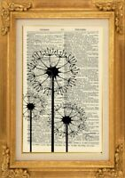 ORIGINAL - Dandelions Art Print on Vintage Dictionary Page - Wall Art NO.483B