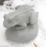 Latex frog on rock mold plaster concrete mould