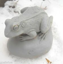 Latex only MOLD frog on rock plaster concrete mold