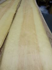 "Pine White wood veneer 12"" x 48"" raw no backing 1/42"" thickness A quality"