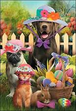 Leanin' Tree Easter Card  - Dogs & Cat with Easter Bonnets Theme - ID#531
