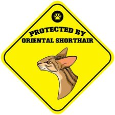 Yellow Aluminum Crossing Sign Protected by Oriental Shorthair Cat Cross Xing
