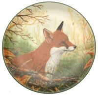 Attentive Fox Plate Portraits Of Nature Rollinson Series CP69