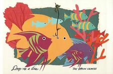 "Colorful Fish Picture Drop me a Line, Us Virgin Islands - Jumbo 9"" x 6"" Postcard"