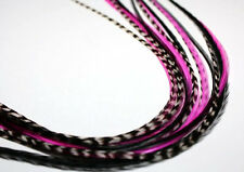 Feather hair extension Hot Pink & black 5 Feathers bonded together at the tip