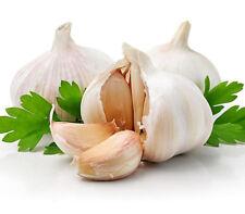 100Pcs Multi-Petals Garlic Seeds Organic Vegetables Kitchen Seasoning Food PT128