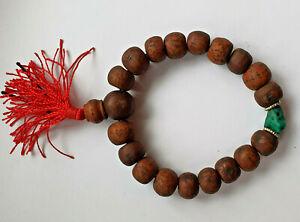 12mm Phoenix eye Bodhiseed Bodhi Seed Buddhachitta & Turquoise Healing Bracelet