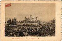 CPA Indre et Loire - Vue du Chateau de Loches (478513)