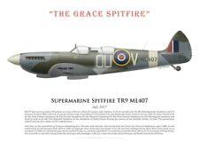 """Print Spitfire TR.9 ML407, The """"Grace Spitfire"""", UK, July 2017 (by G. Marie)"""