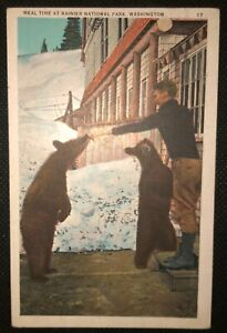 Rainier National Park Washington Rothermel Postcard Vintage 1933