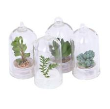 1 PC Fashion Cactus Miniature Succulent Cacti Wearable Necklace Live Plant New