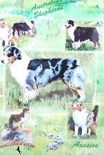 Australian Shepherd Dog Gift Present Wrap