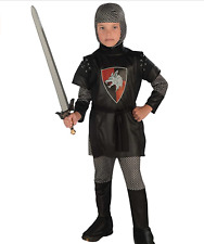 Noble Knight Medieval King's Guard Sir Dress Up Halloween Child Costume Large