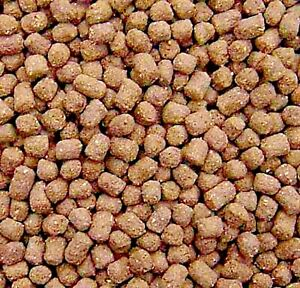 BEST Koi Chiclid Goldfish Fish Food Floating Pond Pellets Medium or Lrg *CHOOSE*