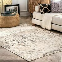 nuLOOM Contemporary Vintage Minette Area Rug in Multi