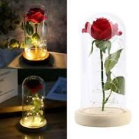 Rose Flower In Glass LED Night Light Valentine's Day Xmas Decoration Light Gift