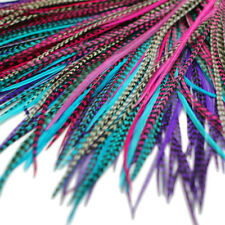 REAL FEATHER HAIR EXTENSIONS 20x KIT: RINGS INCLUDED (B GRADE) Petunia Mix
