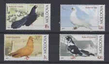 SET OF 4 MOLDOVA 2012 RARE BIRDS MNH STAMPS