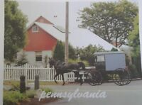 Tee Shirt Pennsylvania (Amish)