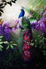 Hd Canvas Print Animals Peacock Oil painting Printed on canvas 16X24 inches P001