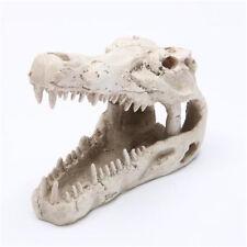 Crocodile Skull Decoration Ornament for Aquarium Fish Tank Reptile Terrarium ♫