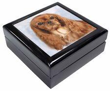 Ruby King Charles Spaniel Dog Keepsake/Jewellery Box Christmas Gift, AD-SKC3JB