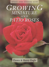 ROSES - GROWING MINIATURE & PATIO ROSES Dawn & Barry Eagle **GOOD COPY**