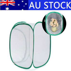 AU Foldable Praying Mantis Stick Insect Cage Butterfly Pop-up Housing  *