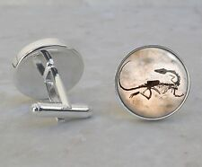 Fossil Dinosaur Paleontology Science Image 925 Sterling Silver Cuff Links