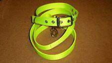 Dog Collar and Lead, HI VIZ YELLOW Webbing, Metal and Eyelet Buckle Collar