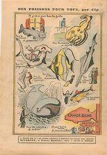 Humour Poissons-Chat Torpille Requin-Marteau/Scie Hippocampe Baleine Thon  1931