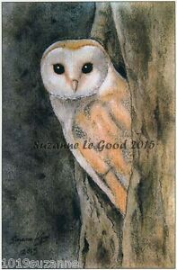 Barn Owl bird print limited edition from original painting by Suzanne Le Good