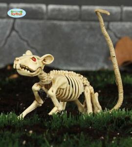 Scheletro ratto topo decorazione halloween 20 cm