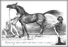 """""""DOES IT COME IN GREY"""" - FUNNY Horse Equestrian Greetings Cards"""
