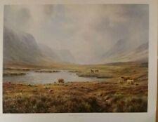 Rex Preston Highland Cattle Glen Coe Landscape Country Scene