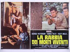 LA RABBIA DEI MORTI VIVENTI horror Durston PATTERSON FULTZ MILLS fotobusta 1978