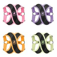 Gooby Active X Step In Dog Harness S M L Small Breed Choke Free Soft Micro Suede