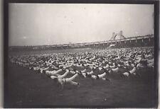 Lyon 1926 Fêtes de la Jeunesse Gymnastique Sport France Photo n16 Vintage