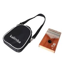 Kalimba Thumb Piano 17 Keys with Bag,Hammer and Music Book,Perfect for Mus P3P3