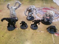 Chaos Renegade Pact Blood Bowl Team OGRE, MINOTAUR, TROLL, ORC, GOBLIN, ELF, RAT