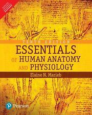 Essentials of Human Anatomy and Physiology by Elaine N. Marieb